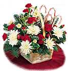 Edmonton Florist, Basket Full of Christmas Flowers & Candycanes/NW01