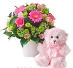 Edmonton Florist, Buttons, Gerberas, Roses, Teddy, in Container/A-07
