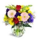 Edmonton Florist, Summer Blooms in Vase/M-06