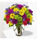 Edmonton Florist, Daisies, Alstromeria,Minis, Solidago,Bow, Delivery ,in Bright colors in Vase/F-02