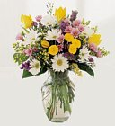 Edmonton Florist, Daisies,Buttons, Solidago, Waxflower, greens & More in Vase/E303