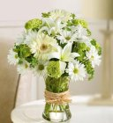 Edmonton Florist, Gerberas, Fujis, Lilies, Buttons, Daisies, in Green & White in vase/E304
