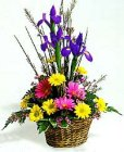 Edmonton Florist, Iris, daisies, solidago, waxflowers, greens willow/E602