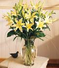Edmonton Florist, 10 stems of Asiatic Lillies in Vase/060