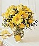 Edmonton Florist, Yellow sensation - with Real Lemon inside vase/075