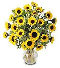 Edmonton Florist, 15 sunflowers in vase/066