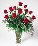 Edmonton Florist, 12 stems of roses,  greens, vase/005