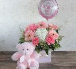 Edmonton Florist, Dutch Tulips in Vase , Teddy Bear, Mylar Balloon/061