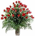 Edmonton Florist, 36 long stem roses, leather leaf, fern,vase/012