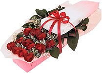 Edmonton Florist, 24 long stem  roses, babies breath, box, ribbon/008
